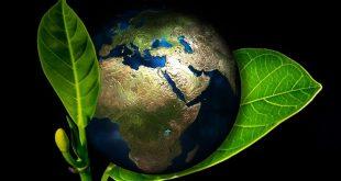 Alimentazione bio, crescita esponenziale dei prodotti naturali sulle tavole degli italiani