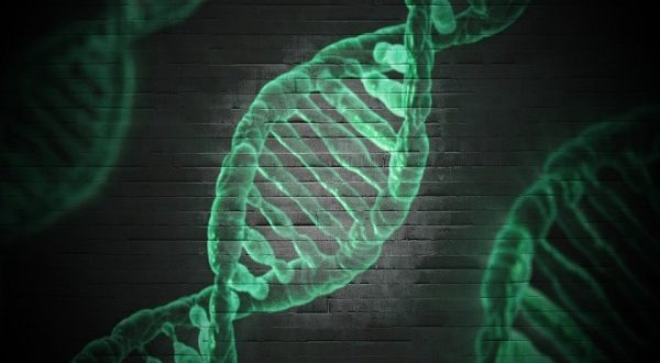 Malattie rare di origine genetica, sono 8 su 10, una su tre è senza nome